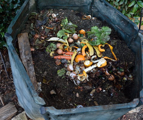 coffee compost pile