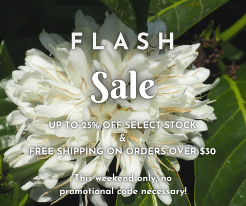 Flash sale this weekend only!