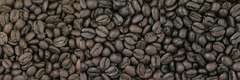 Three Different Coffee Roast Levels