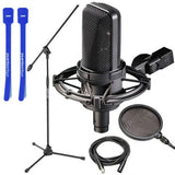 Audio-Technica AT4033CL Condenser Mic w/ Stand, Pop Filter, XLR & Cable Ties