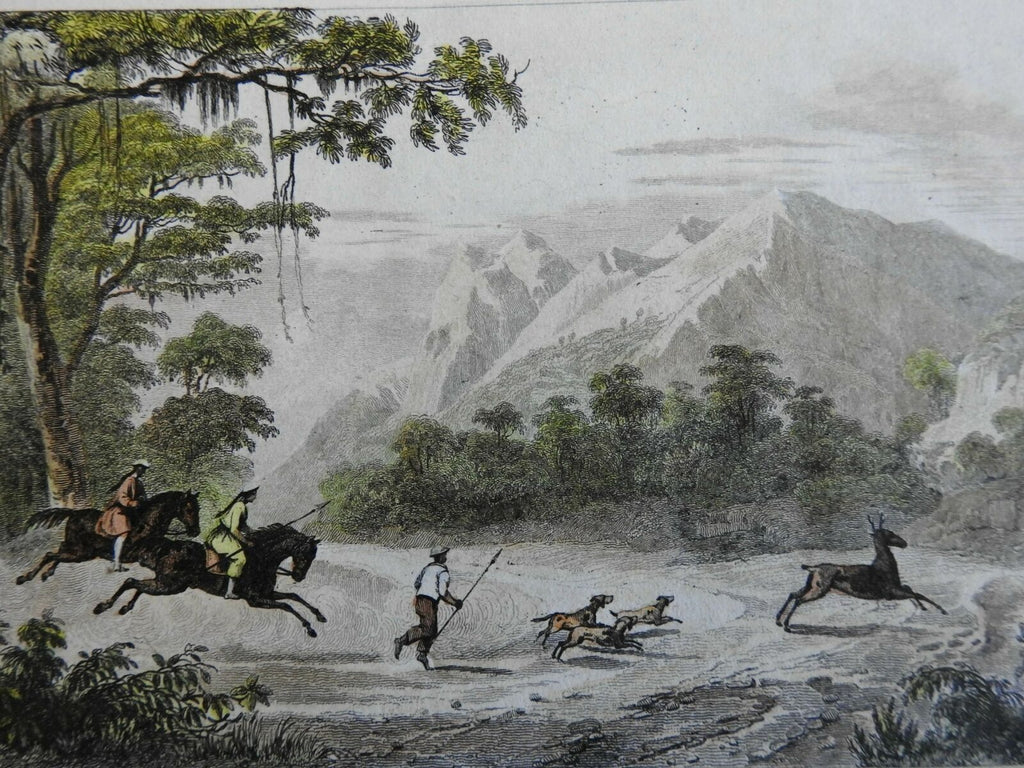 Luzon Philippines Mount Mariveles 1839Hunting Dogs Scene engraved print