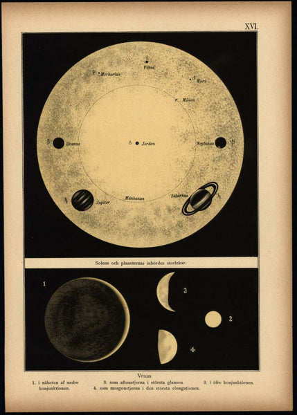 Venus Planets orbits 1888 Celestial print beautiful color scarce Swedish