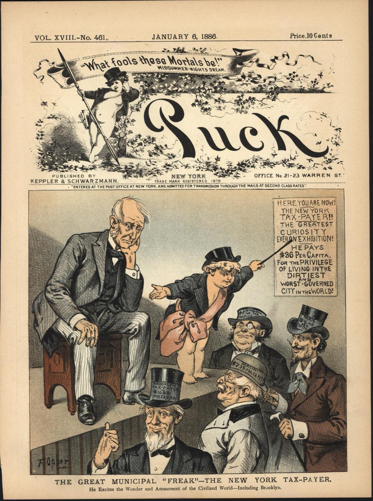 New York Tax Payer Great Municipal Freak 1886 antique color lithograph print
