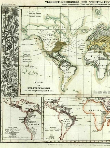 World vegetation plants distribution scientific by continent 1849 Meyer map