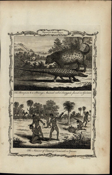 Criminal Execution Guinea Zuoggelo ca. 1780's fascinating old engraved print