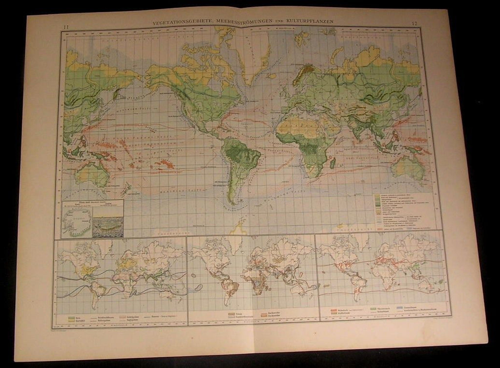 World Vegetation Ocean Currents Cultural 1899 large detailed old German color ma