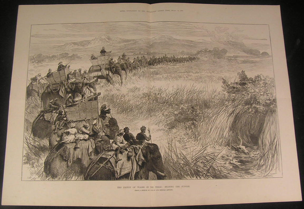 Prince of Wales Tamed Elephants Indian Jungle 1876 antique wood engraved print