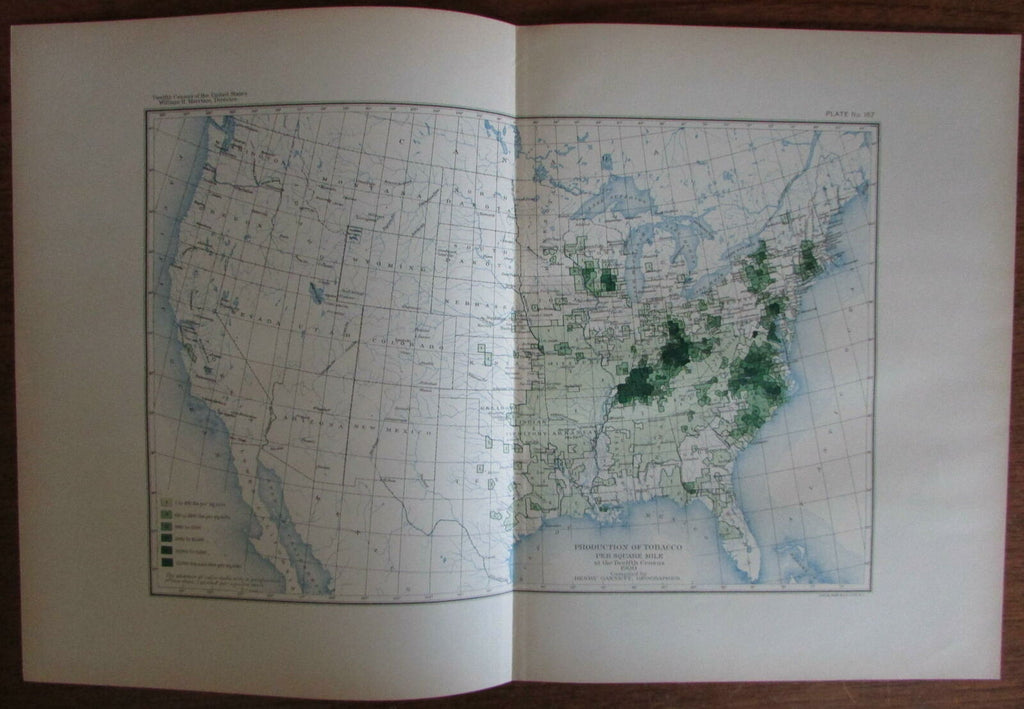 Tobacco Production in the U.S.A. 1903 Gannett vintage agricultural map