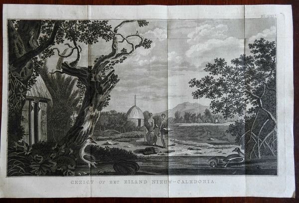 New Caledonia South Pacific Landscape View 1800 Captain Cook engraved print