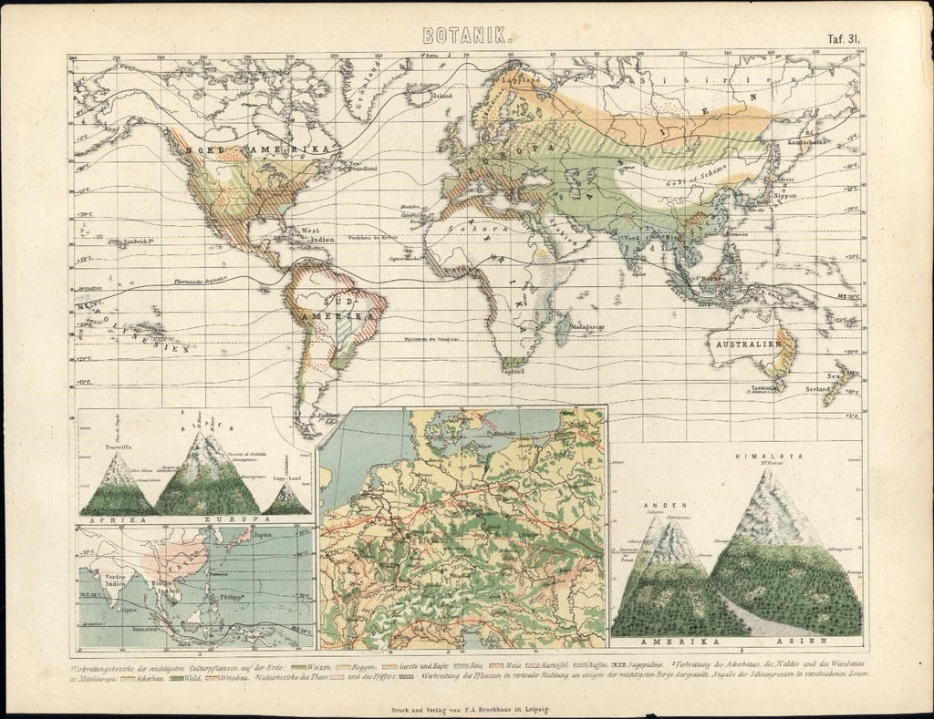 World map showing distribution of Botany c.1870 old color mountain heights