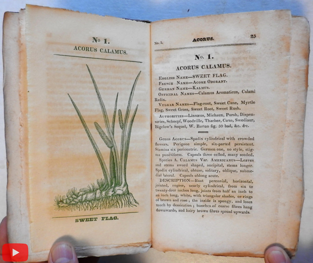 Medical flora Botany Botanical book 1828 Phila. by Rafinesque 50 color plant plates