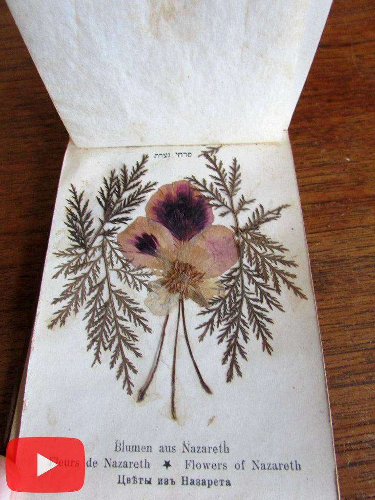 Holy Land Jerusalem souvenir c.1900 dried Flower book wood covers complete