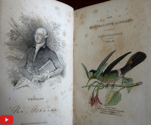 Hummingbirds Ornithology 1833 Jardine Lizars 2 vol. set w/ 64 bird plates hand colored