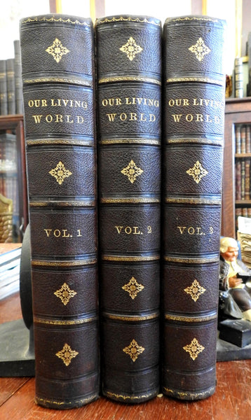 Natural History Our Living World JG Wood's 1885 leather set 3 vols color plates