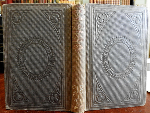 Travels in South America Mexico California '49 Gold Rush 1860 L.M. Schaeffer