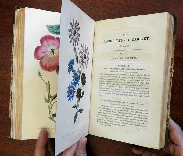 Florticultural Cabinet 1843 Harrison 12 issues w/ 12 Floral Botanical plates