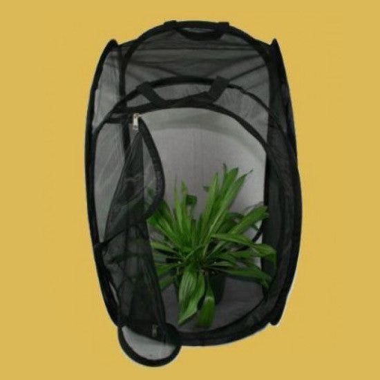 "Butterfly Habitat - Medium (Black) - 13.5"" X 13.5"" X 24 """