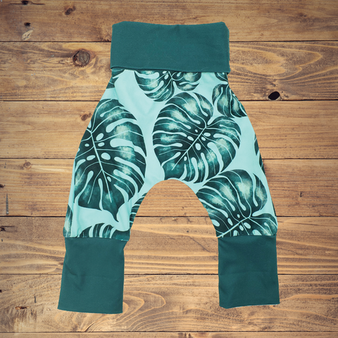 Monstera - All Sizes - Harems
