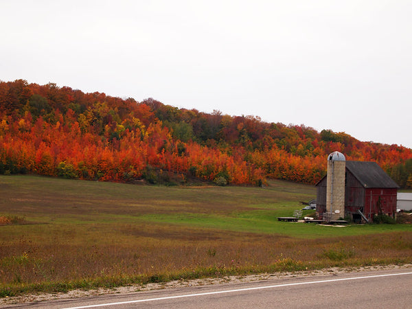 Fall view with barn | Home and Timber