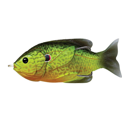 Live Target Hollow Body Sunfish Florescent Pumpkinseed 3.5