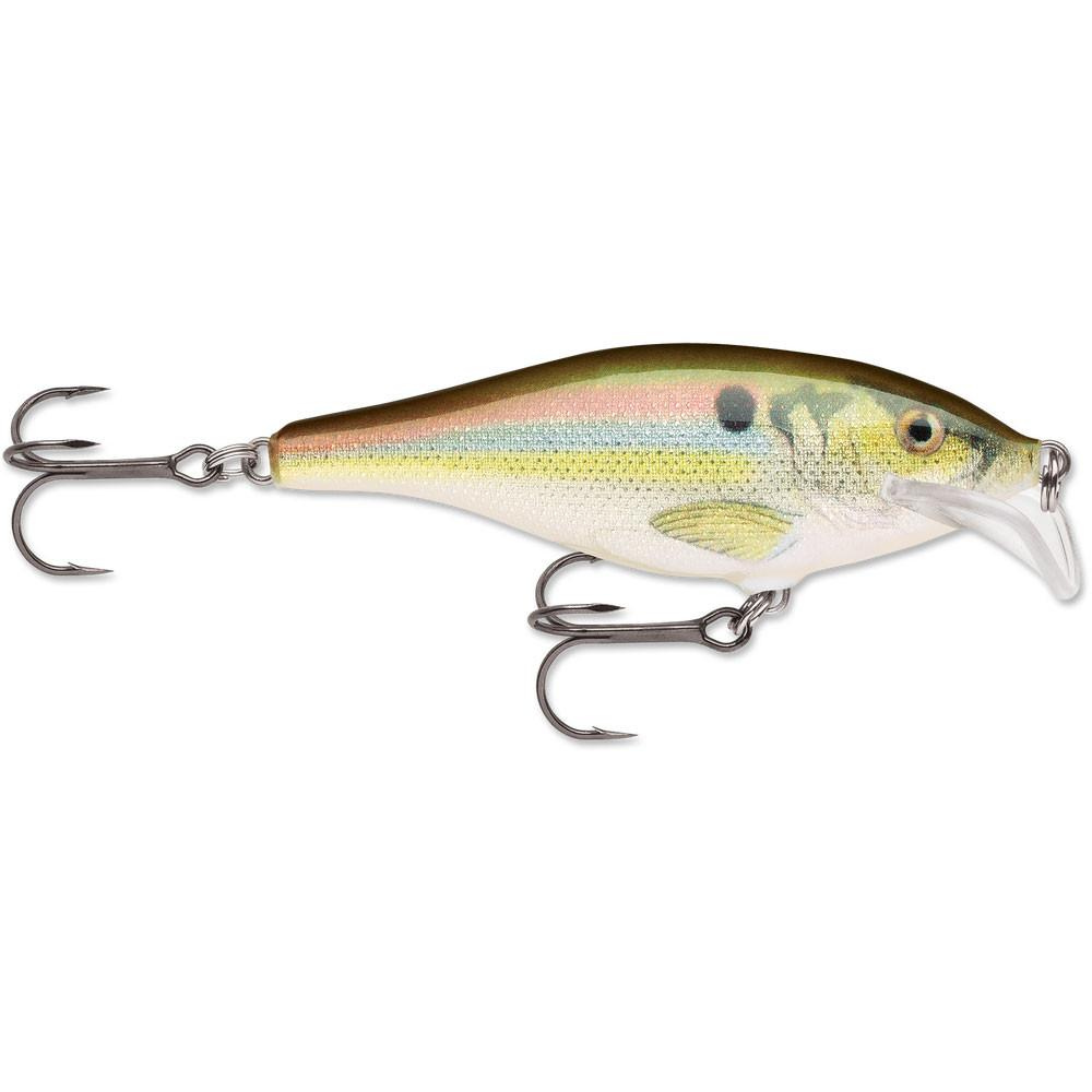 Rapala Shad Rap Suspending Rattle SRRS-5 Live River Shad 2""