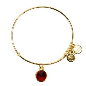 January Birthstone Charm Bangle in Russian Gold for $28 for this proud Capricorn.