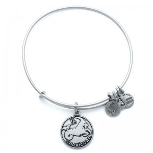 Capricorn Charm Bangle in Russian Silver for $28