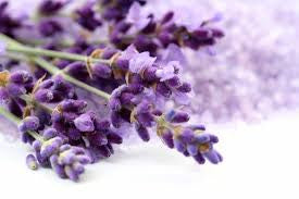 Lavender Body Care