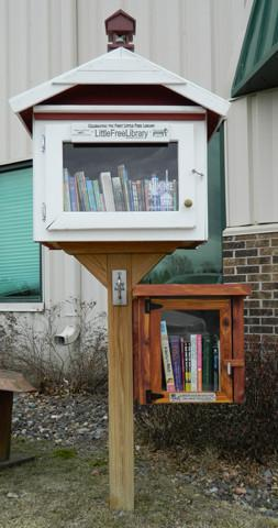 Cedar Mini Shed Little Free Library box