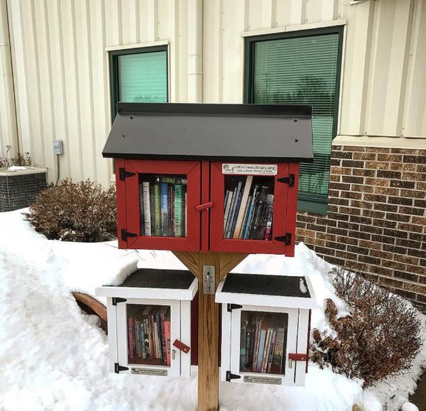 Double Door Gable Little Free Library box