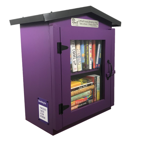 Pancreatic Cancer Action Network Two Story Gable Little Free Library