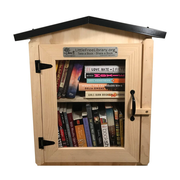 Two Story Gable Unfinished Little Free Library box