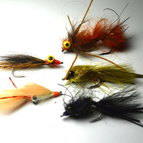 Carp Edition Fly Pack