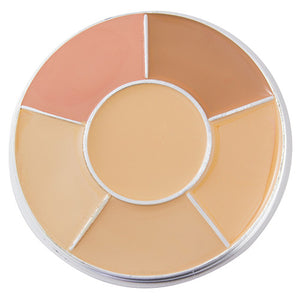 PRO Correct and Concealer Cover Wheel - Warm Neutral