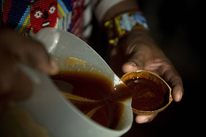 Health Canada allows more religious groups to import ayahuasca