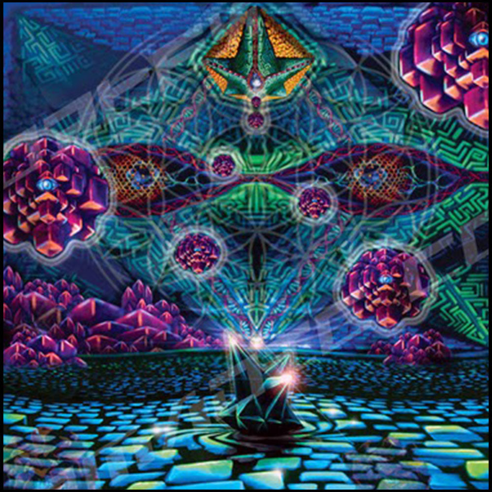 What are the DMT machine elves?