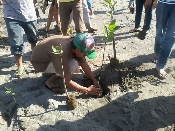 After A New Law, Students In Philippines Need To Plant 10 Trees To Graduate And It'll Result In 525 Million New Trees In One Generation