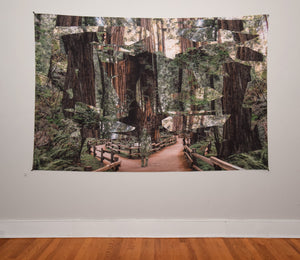 Redwoods Tapestry 60x90 Inches by Hubert Solczynski