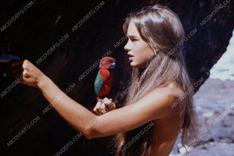 Brooke Shields and a parrot film The Blue Lagoon 8b20-10509