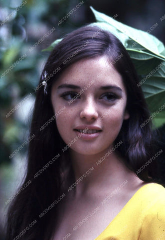 Angela Cartwright portrait 8b20-2091
