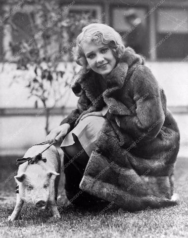 Anita Page always walks her pet pig in a fur coat 8b20-4027