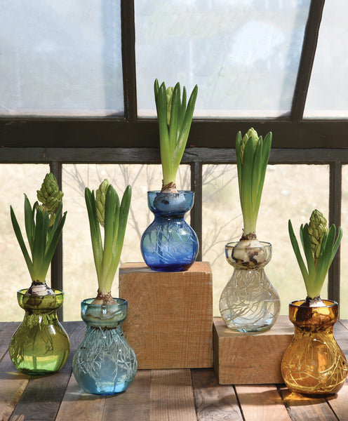 Recycled Bulb Vase