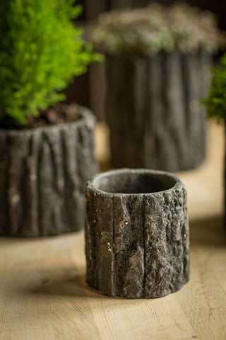 Round Cement Pot with Bark Motif: Small