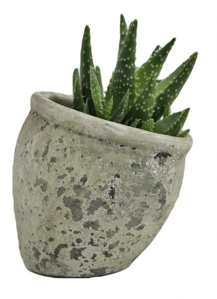 Cement Slant Planter
