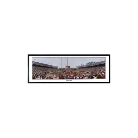"Ohio State Buckeyes ""Home Game"" - 13.5""x39"" Standard Black Frame"