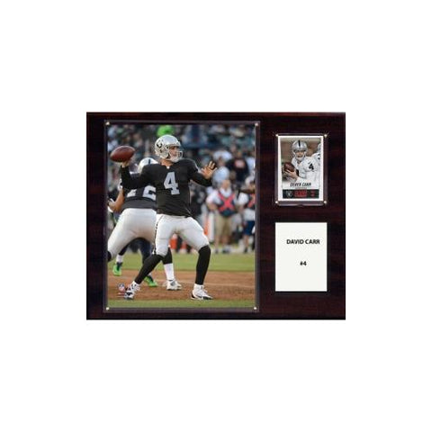 NFL 12in x15in  David Carr Oakland Raiders Player Plaque