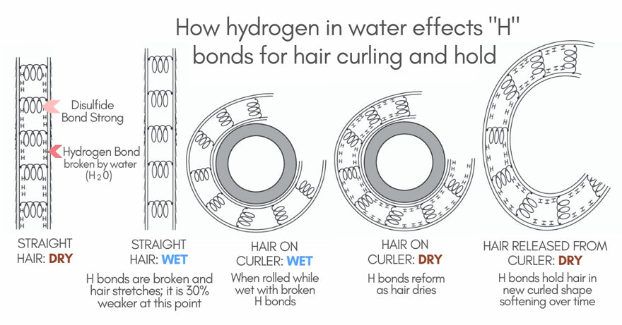 "How Hydrogen in Water Effects ""H"" Bonds for Hair Curling and Hold"
