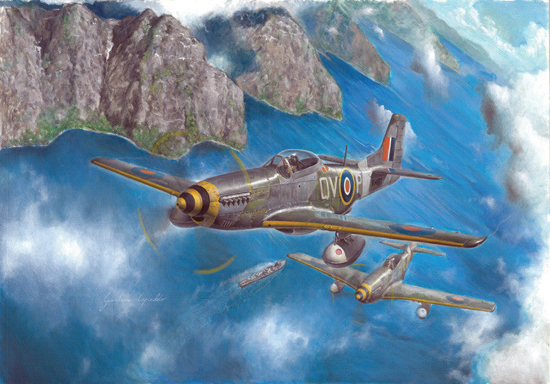 Italeri Aircraft 1/48 P51 Mustang IVa Fighter Kit