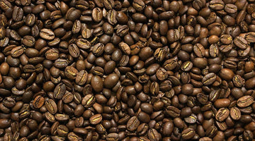Introduction to Coffee Series - Arabica