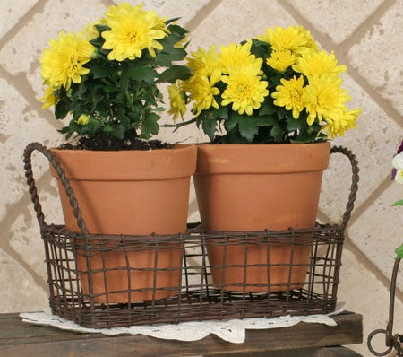 Small wire basket w/ terra cotta pots